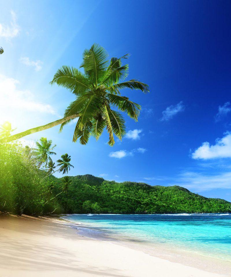islas mauricio ss agencia de viajes