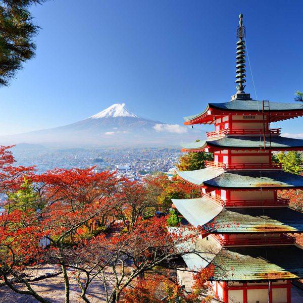 viaje a japon agencia viajes valladolid
